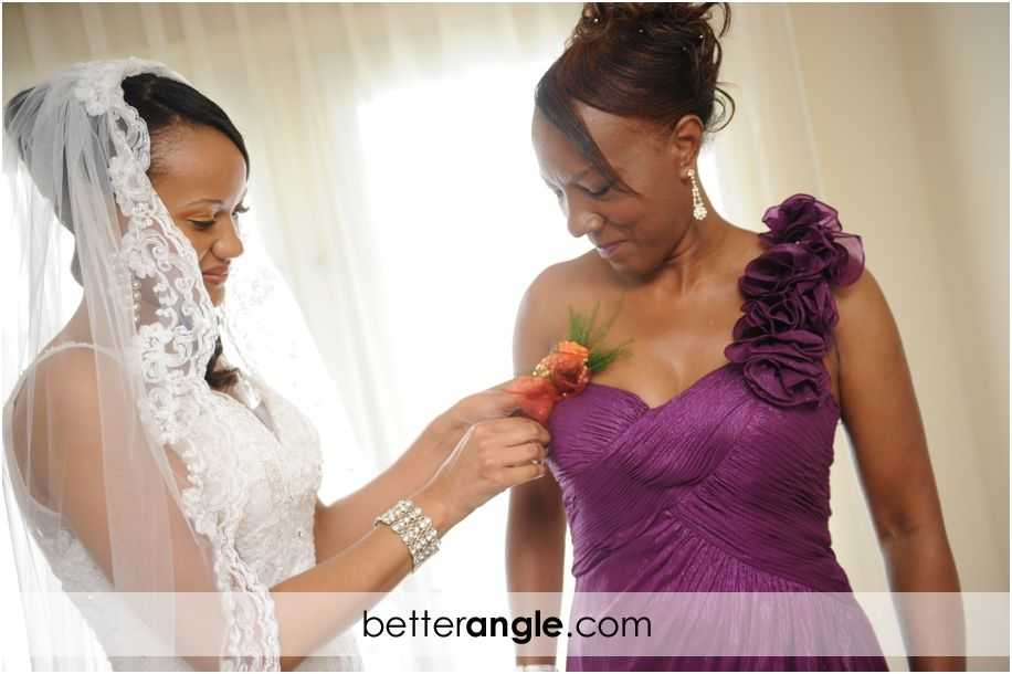 Grand Old House Wedding0005