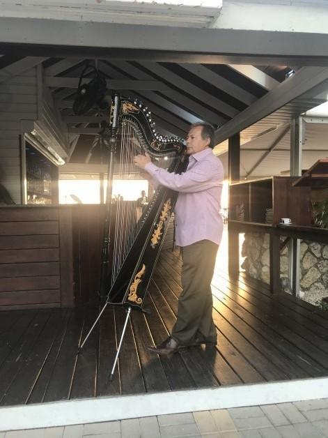 Harpist Extraordinaire